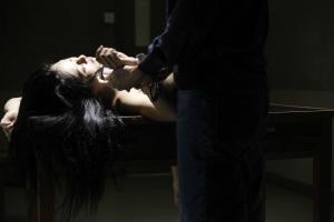 Asian Movies Films Korean Japanese Awards Terracotta Terror Cotta Terrorcotta Joey Review Chinese Mandarin CANTONESE