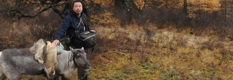 Mongolian Films